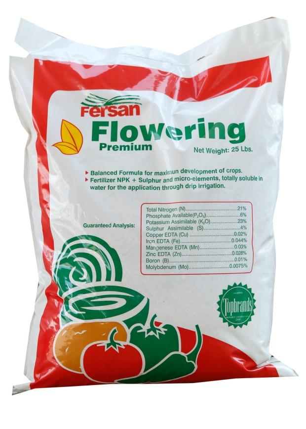flowering-jpeg