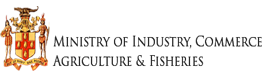 MICAF-logo